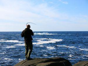 Jensfisking